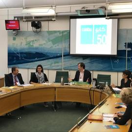 Parliamentary meeting on British Arabs 4 September 2019